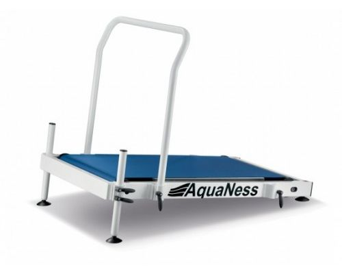 Aquaness treadmill 2