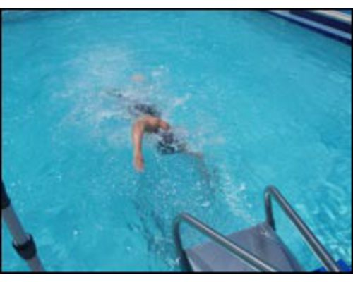 Swimming in the Fastlane current