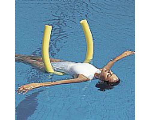 Swimming Pool Noodle or Water Log