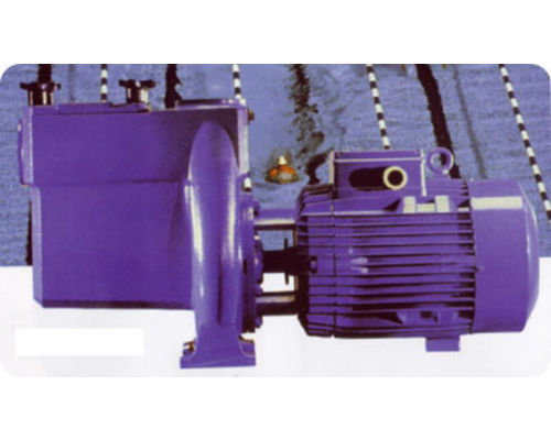 Calpeda NMP commercial swimming pool Pump