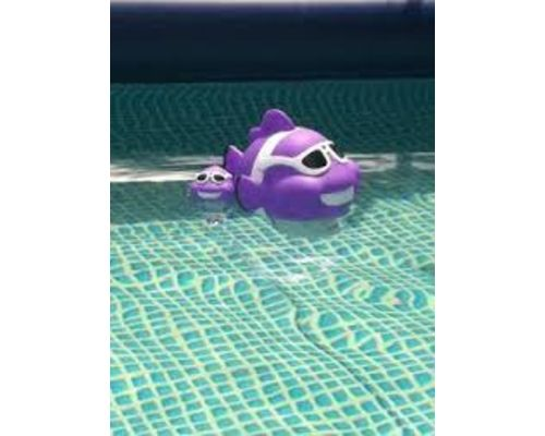Clownfish thermometer in pool